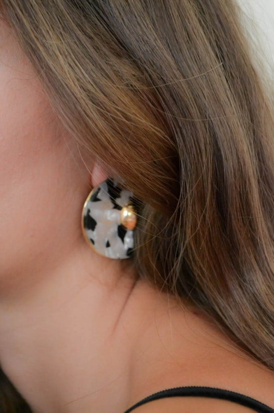 Earrings (53)